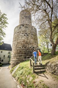 Burgruine Neuhaus bei Windischeschenbach