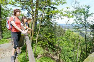 Aussicht vom Schwarzwihrberg bei Rötz
