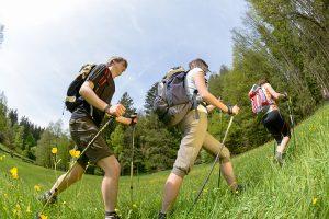 Wanderer im Bayerischen Wald